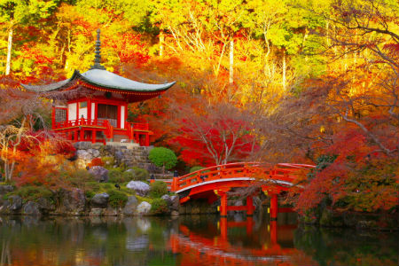 Kyoto in the autumn