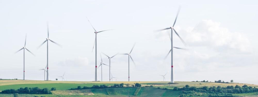 Wind energy has huge untapped potential in Japan