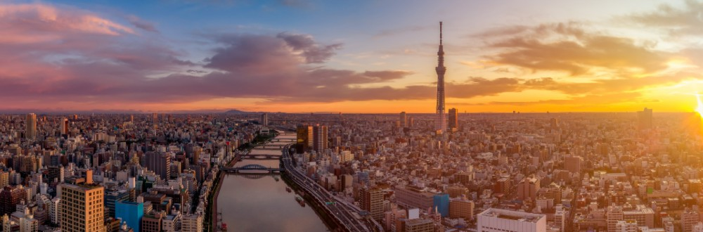Tokyo is a massive metropolis of 14 million people.