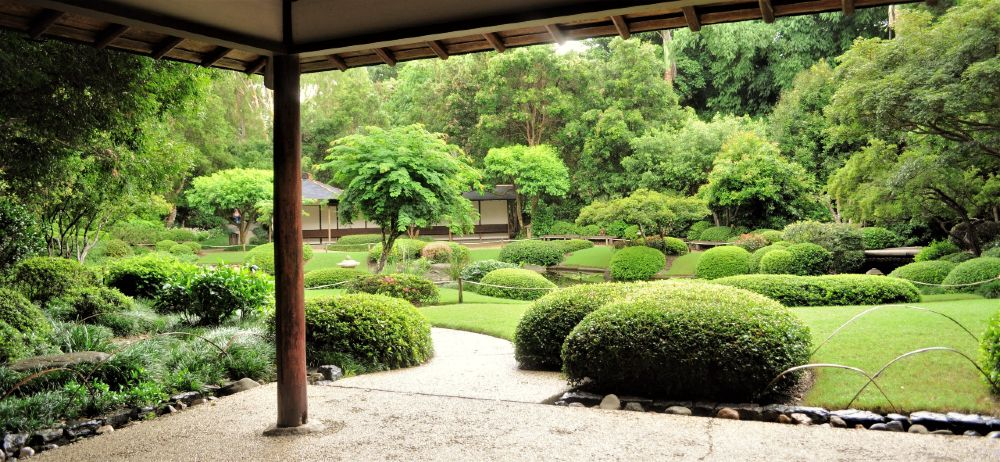 A traditional Japanese garden is beautiful – and very high maintenance.
