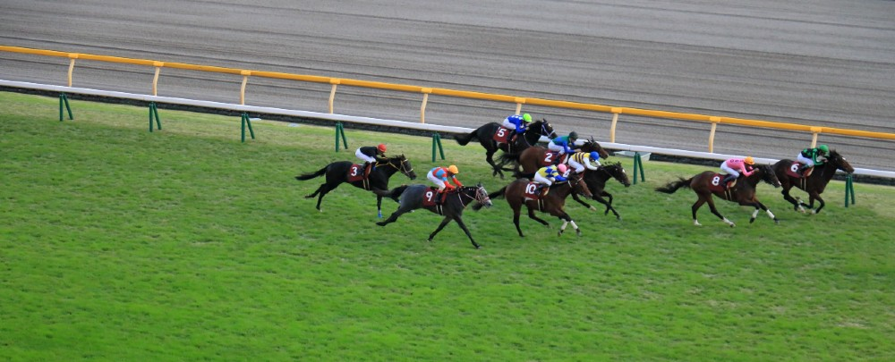 Horse racing, or Keiba as it is known locally, is one of the few legal forms of gambling Japan.