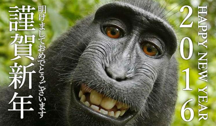 2016-year-of-monkey