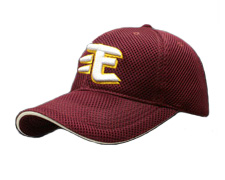 Rakuten Golden Eagles Cap